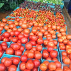 going-out-of-tomatoes-sale
